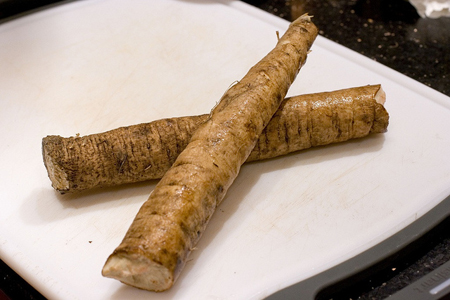Burdock Root for Joint Pains