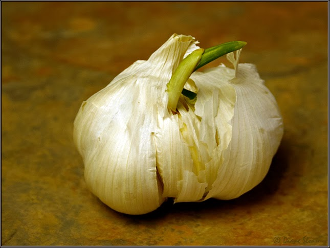 Garlic for Sinus Infection