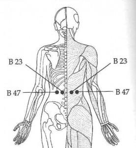B 23 and B 47 Acupressure
